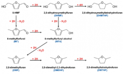 28. Electrocatalytic Hydrogenation of 5‐Hydroxymethylfurfural in Acidic Solution