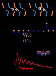 Fig4_v13