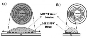 ADv.Funct.Mater 2008