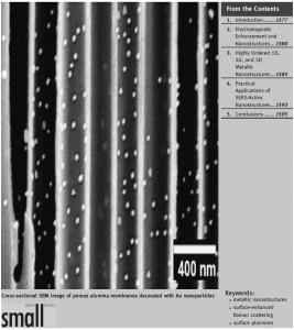 small 2008 nanostructure