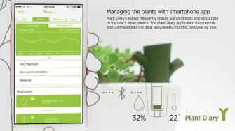Plant-diary-6