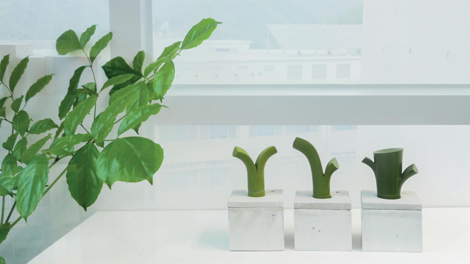 Plant-diary-8