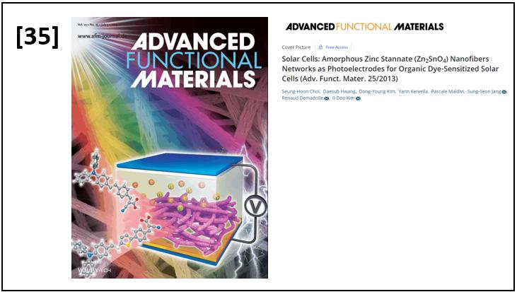 Amorphous Zinc Stannate (Zn2SnO4) Nanofibers Networks as Photoelectrodes for Organic Dye- Sensitized Solar Cells