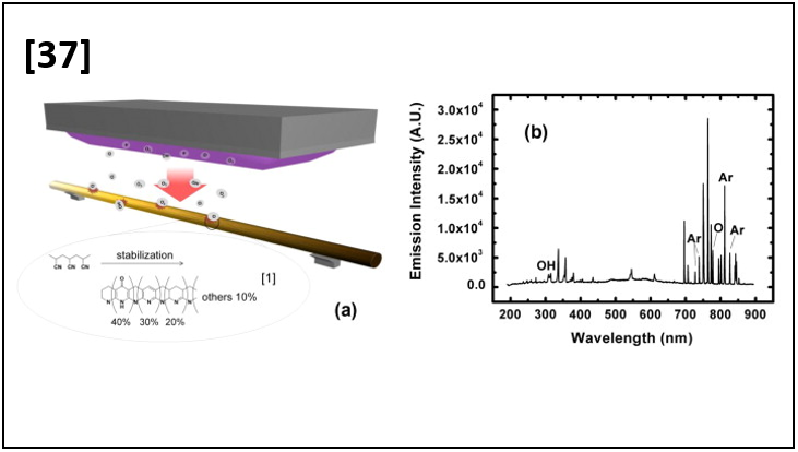 Efficient Preparation of Carbon Fibers using Plasma Assisted Stabilization